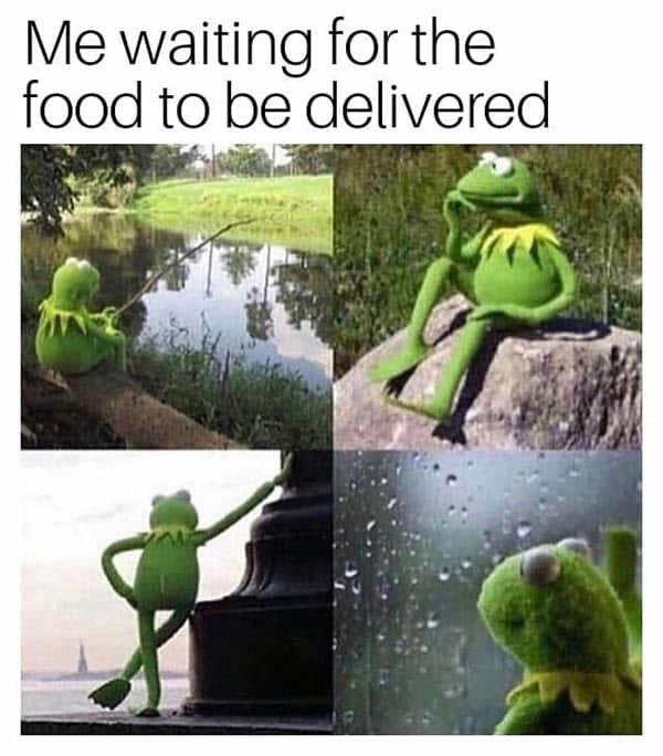 food delivery memes kermit