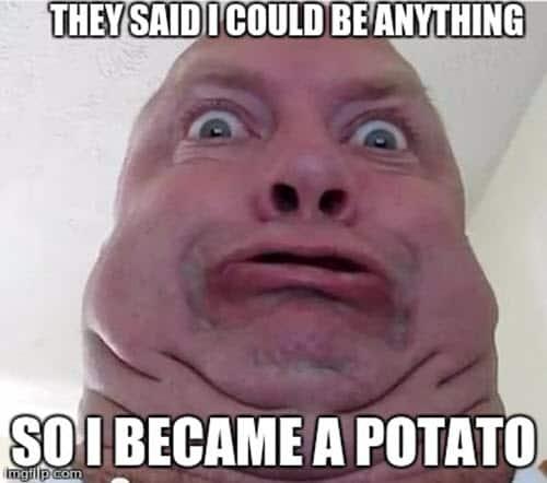potato they said meme