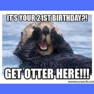 21st birthday meme otter here