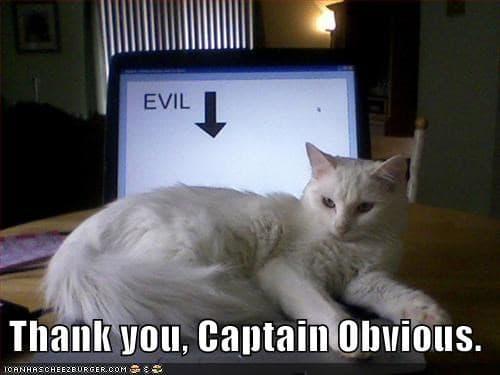Evil cat Captain obvious Meme