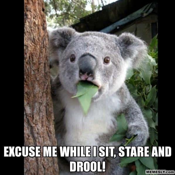 Excuse-me-Drooling-Meme.jpg