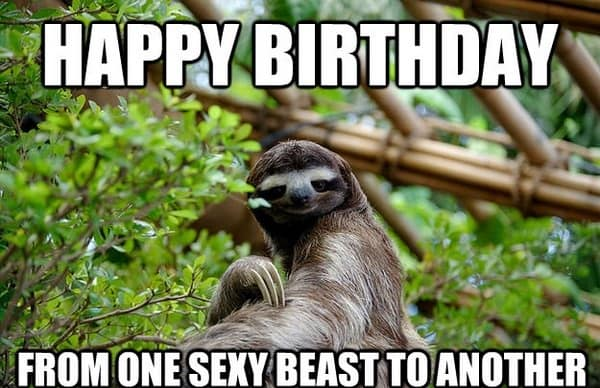 Happy birthday from one sexy beast to another meme 20 happy birthday memes for your best friend sayingimages com