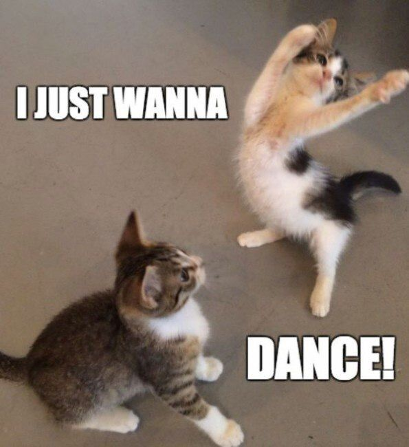 I just wanna Dance Meme