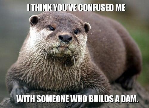 I think you've confused Otter Meme