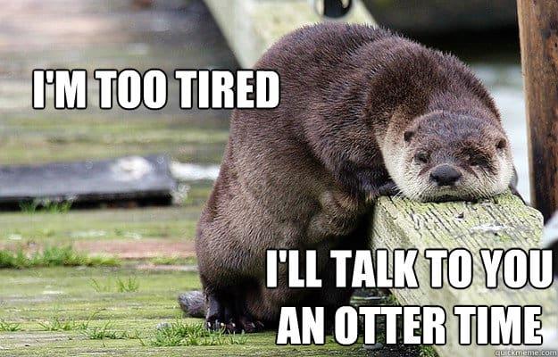 I'm too tired Otter Meme