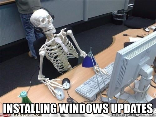 Installing window updates Skeleton Memes