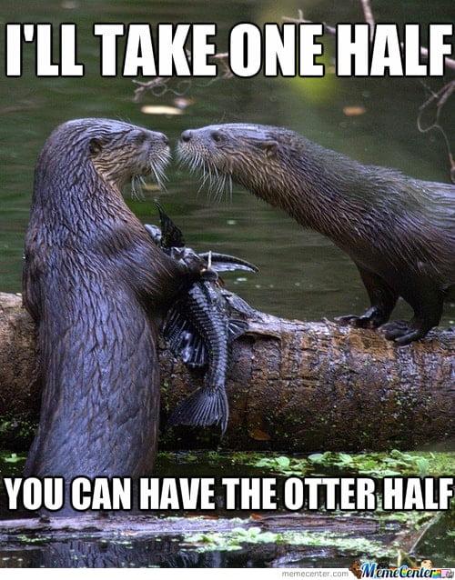 Otter half Otter Meme