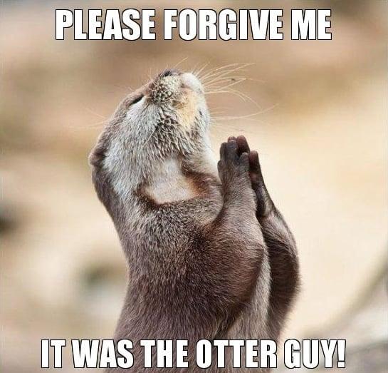 Please forgive me Otter Meme