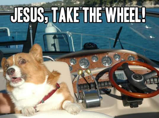Scared dog Jesus take the wheel Meme