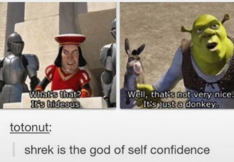 Self confidence Shrek Meme