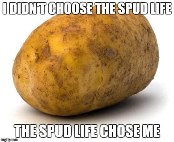 Spud-life-Potato-Meme.jpg