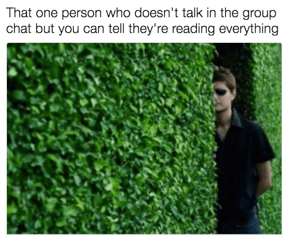 That one person who doesn't talk Group chat Meme