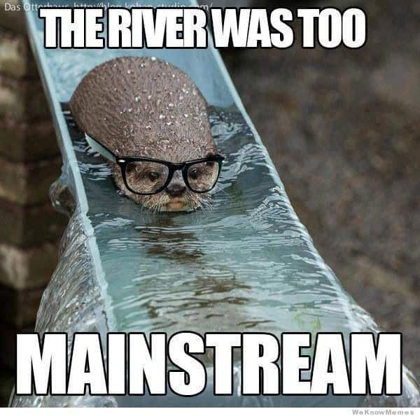 The river was too mainstream Otter Meme