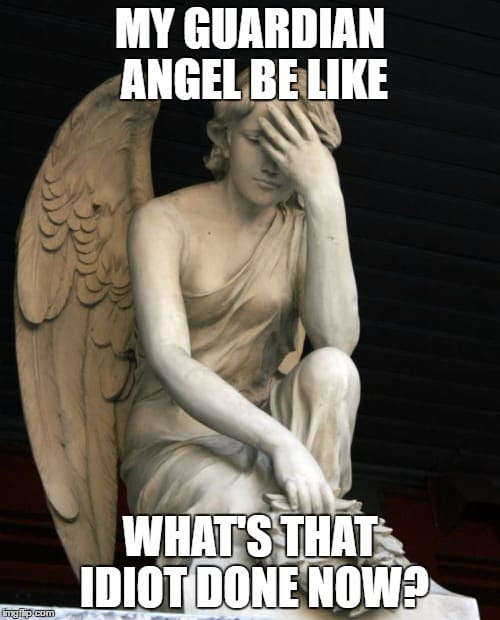 What did that idiot do Angel Meme
