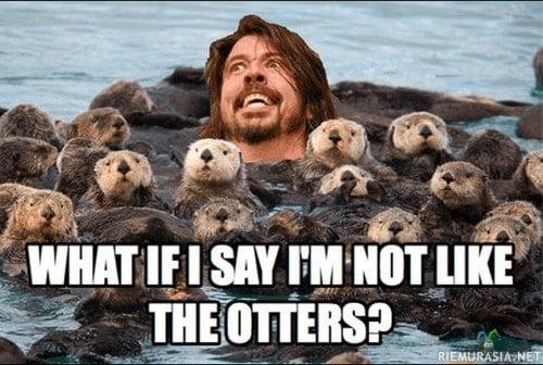 What if i say Otter Meme