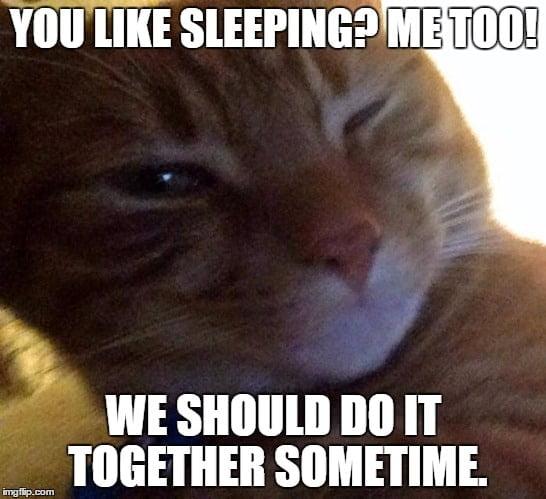 You like sleeping Flirty Meme