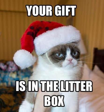 Your gift Merry christmas Meme