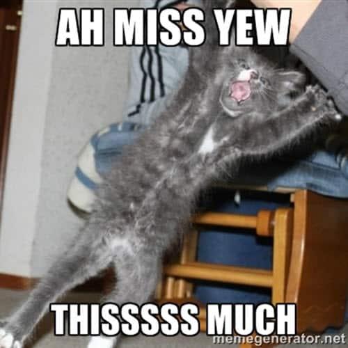 ah i miss you memes