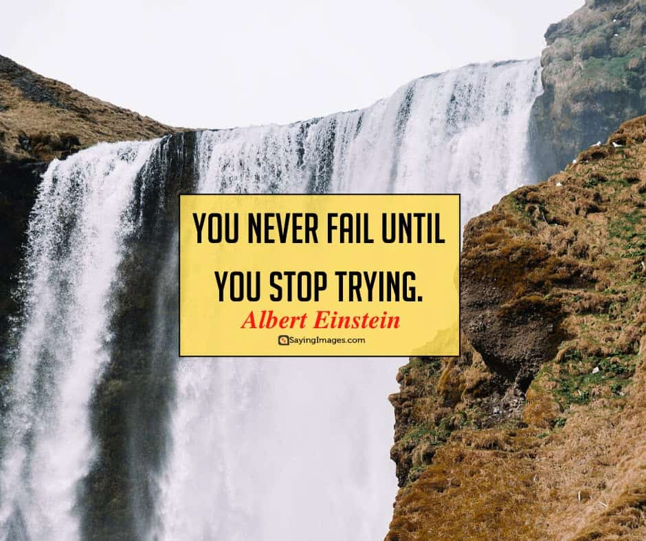 albert einstein fail quotes