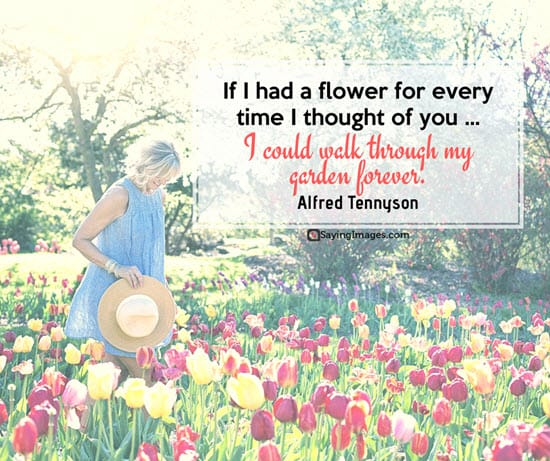 alfred tennyson romantic quotes