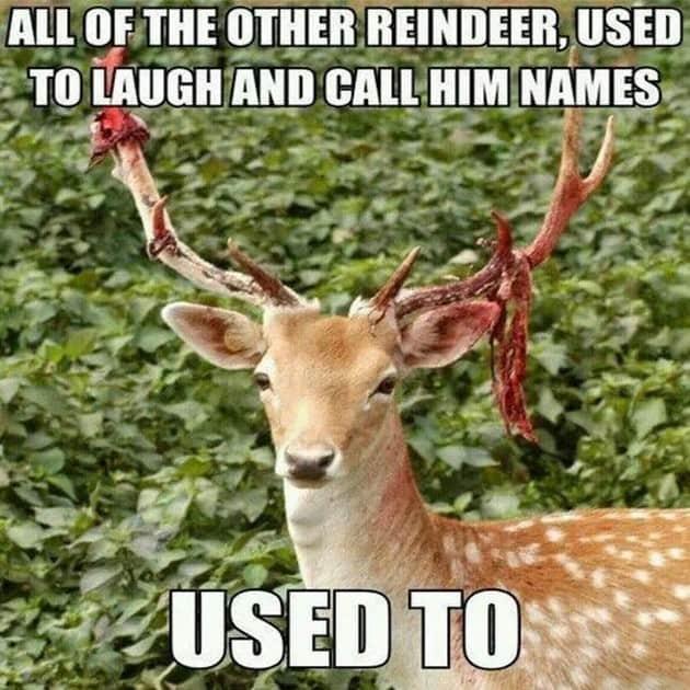 20 super funny christmas memes volume 2 sayingimages com
