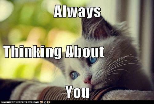 always thinking about you meme