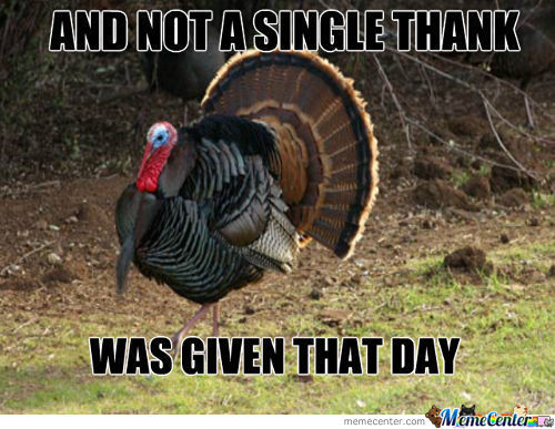20 Happy Thanksgiving Memes To Help You Celebrate Sayingimages Com
