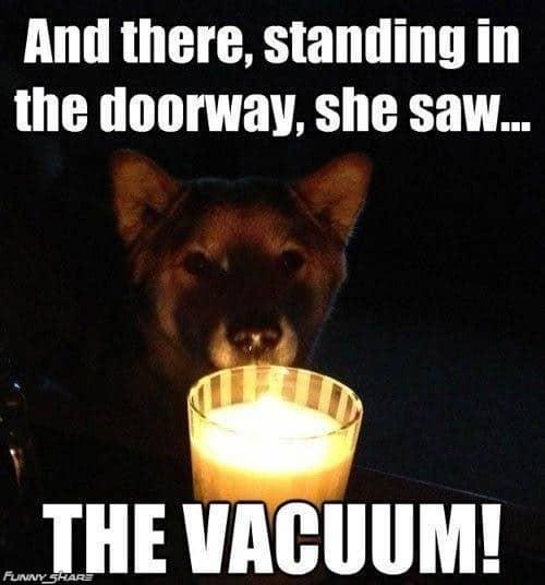 Spooky halloween meme