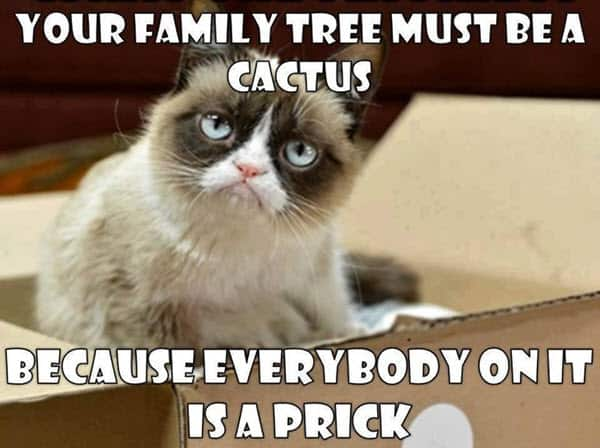 angry family tree memes