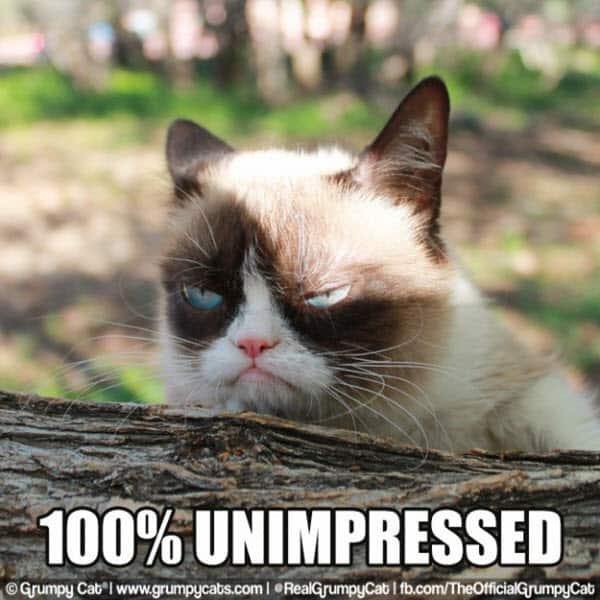 annoyed unimpressed meme