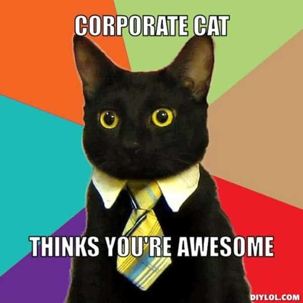 awesome corporate cat meme
