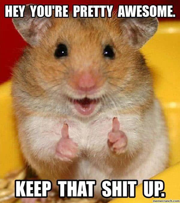 awesome youre pretty meme