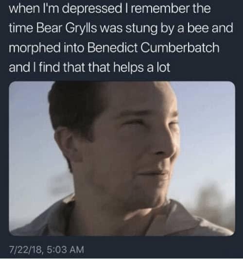 bear grylls depressed meme