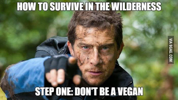 bear grylls how to survive meme