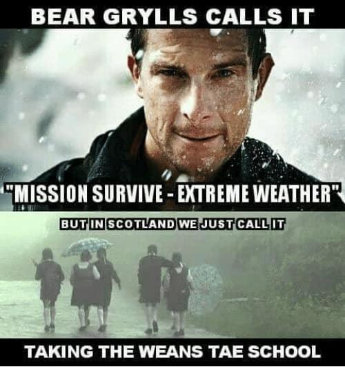 bear grylls mission survive meme