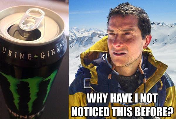 bear grylls monster energy drink meme