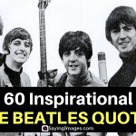 60 Inspirational The Beatles Quotes