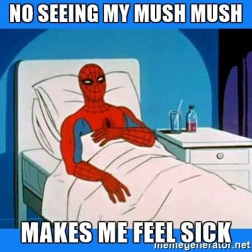 being sick mush mush meme