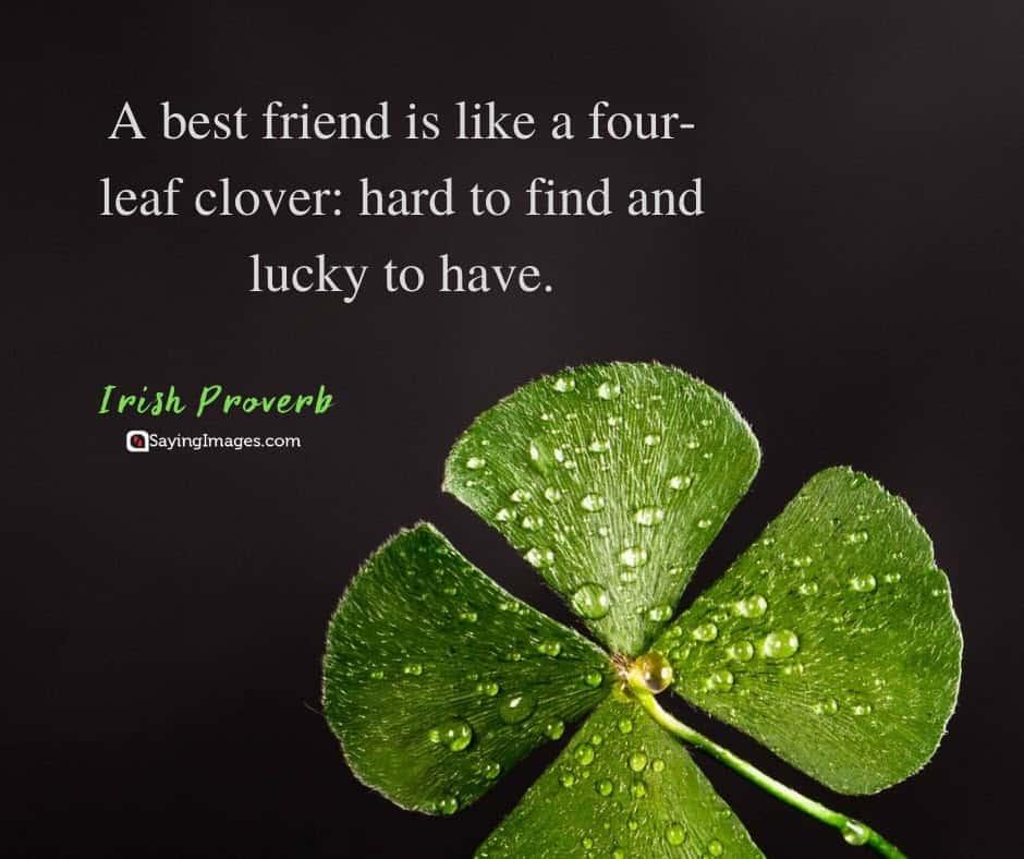 best friend clover quotes