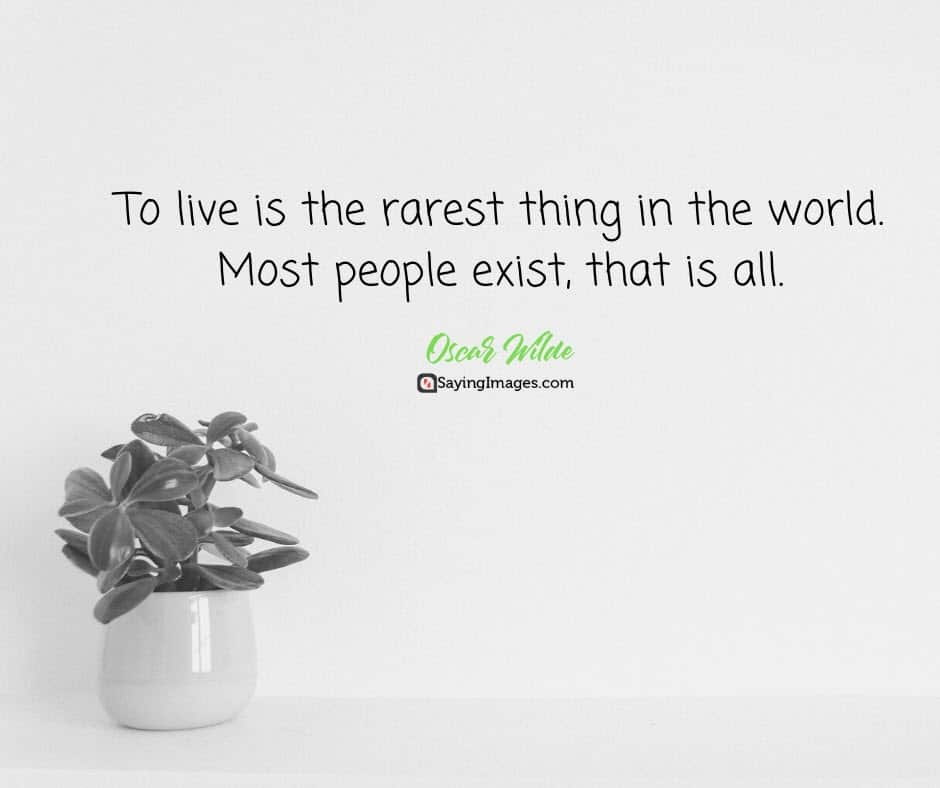 Best Quotes Ever The World Best Quotations