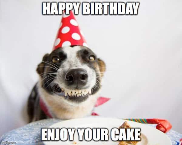 brother birthday enjoy your cake meme