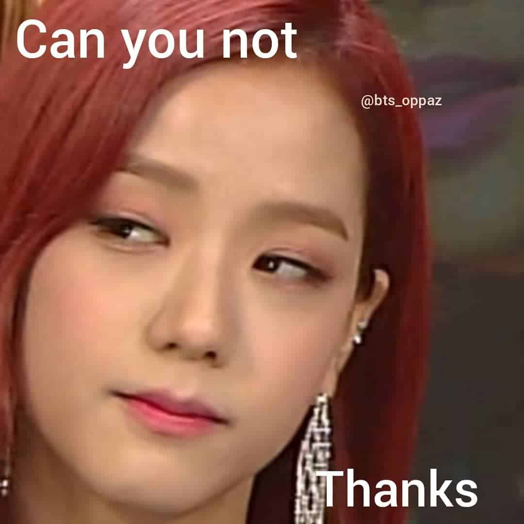 can you not jisoo meme
