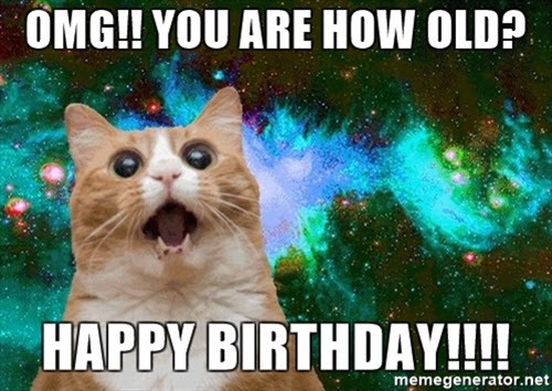 cat birthday how old are you meme