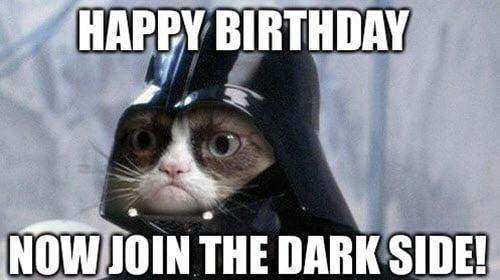 cat birthday join the dark side meme