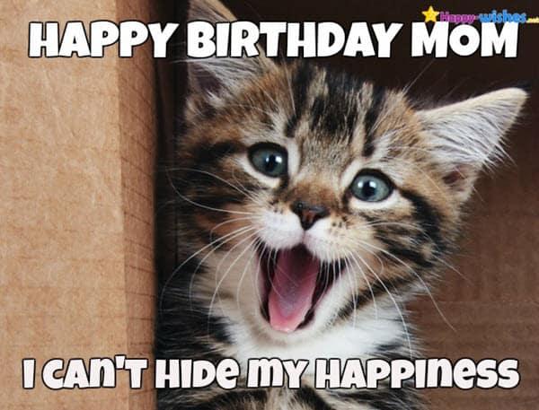 cat happy birthday mom meme