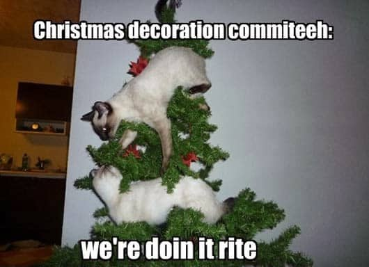 Funny Christmas Meme 2014 : Things you ve done at christmas