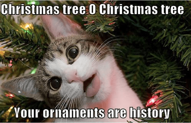 100 Funniest Merry Christmas Memes Sayingimages Com