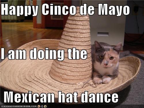 cinco de mayo mexican hat dance meme