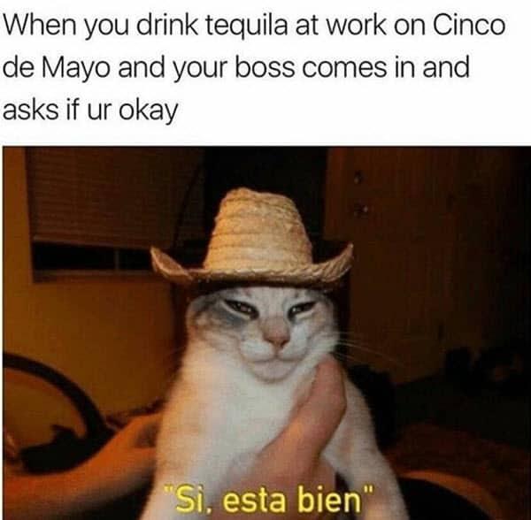 cinco de mayo tequila at work meme