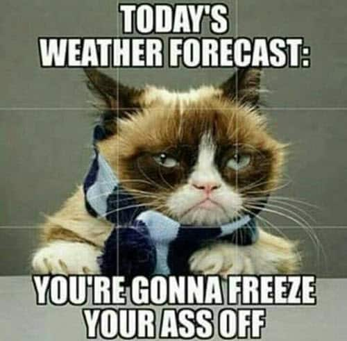 cold weather todays forecast meme